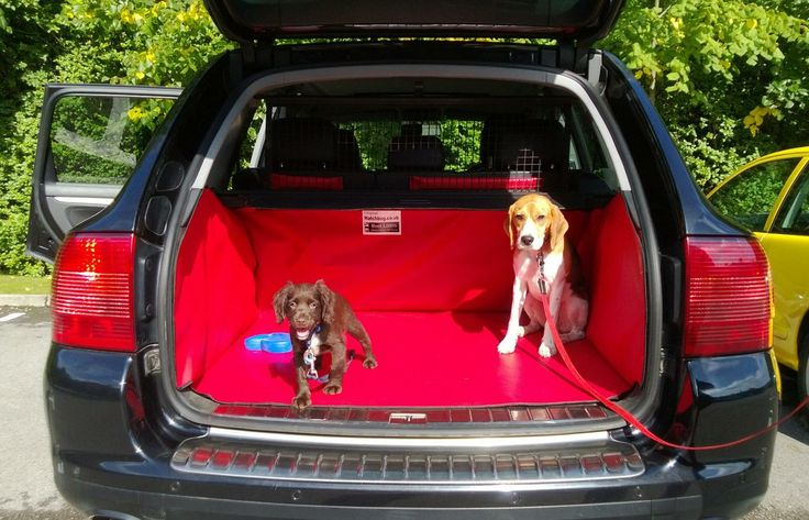audi a3 dog boot liner | we love boot liners {made in britain