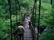 Iya Valley Area | Japan National Tourism Organization