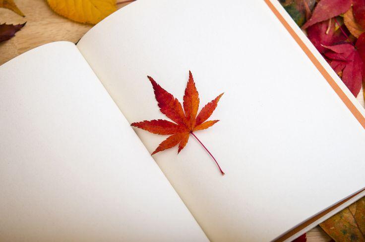 Bok med pressade löv.