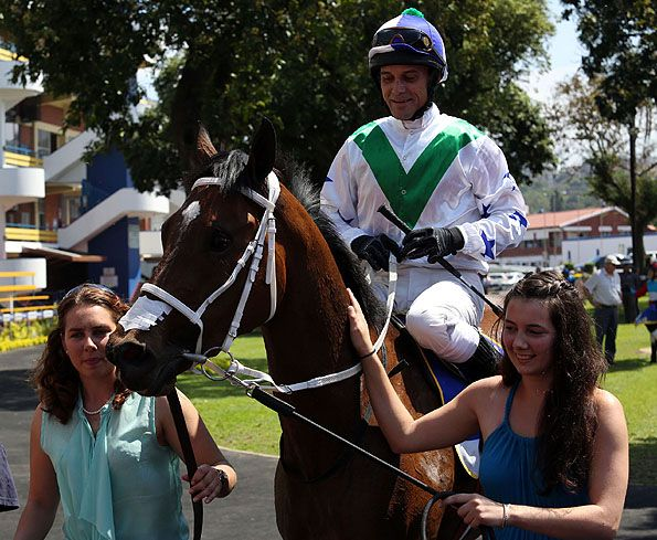 Summerhill Race Results: Greyville Polytrack 09/11/14 Race 1: MAIDEN PLATE (F & M) 1000m Winner: DREAM BAY Mullins Bay (GB) x Any Dream by Muhtafal (USA). Bred By: Greenhill Farm  Owner: Mesdames T L Crawford and H A Crawford. Trainer: L Crawford  Jockey: Derryl Daniels  Gold Circle Photo  www.summerhill.co.za