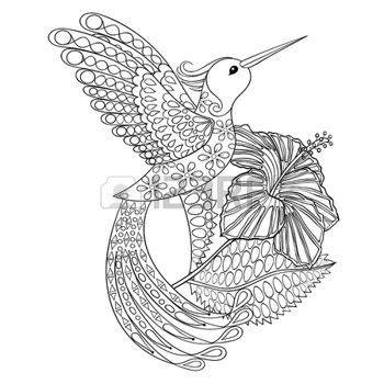 Zentangle Coloring Page With Hummingbird In Hibiskus Illustartion For Adult Books Or