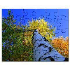 Alive Puzzle