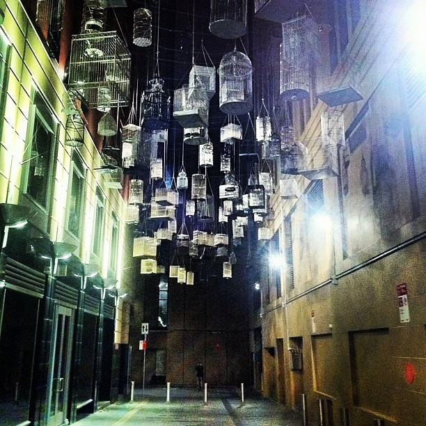 Sydney city alleyway of hanging bird cages: Birds Cages, Favorite Places, Fellt Tuula, Cities Alleyway, Beautiful, Birdcages, Birdca Instagram, Sydney Cities, Installations Art