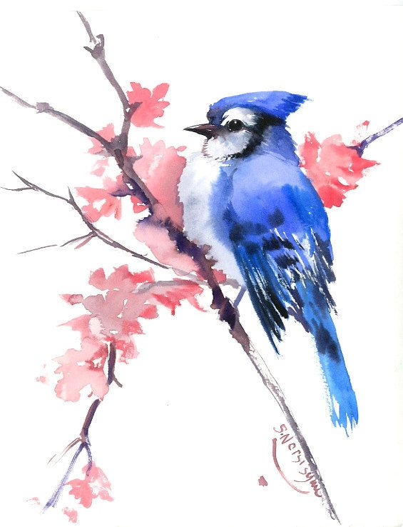 Blue Jay original watercolor painting 10 x 8 in blue hay minimalist painitng, blue jay and spring flowers pink blue wall art $30.00