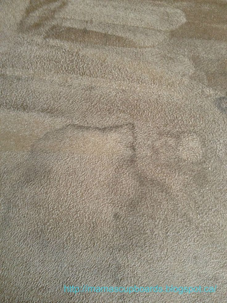 25  best ideas about Cleaning Suede Couch on Pinterest   Cleaning suede  Suede  couch and Couch cleaning. 25  best ideas about Cleaning Suede Couch on Pinterest   Cleaning