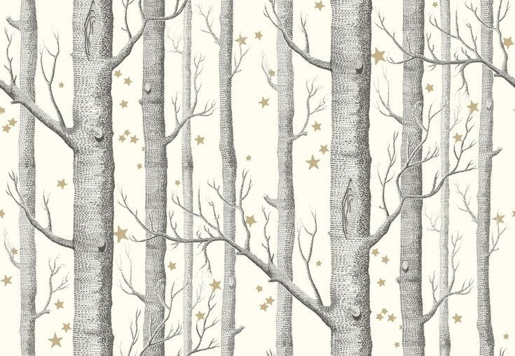 Woods and Stars (103/11050) - Cole & Son Wallpapers - The iconic woods design now ushers you into the most fairytale of worlds, a forest of silver birches and dainty star clusters. Shown here in black on white with metallic gold shimmering stars. Other colour ways available. Paste the wall product. Please request a sample for true colour match.