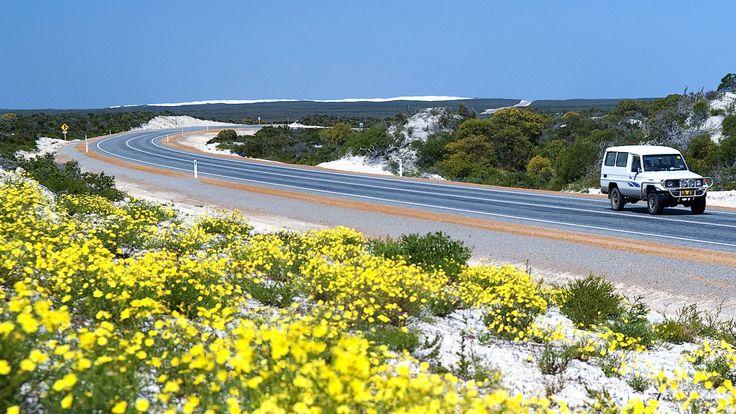 Indian Ocean Drive, Perth to Geraldton, WA. © Australia's Coral Coast