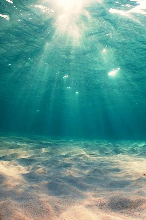 Under the Sparkling Sea