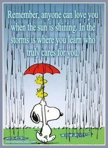 Fair weather friends.
