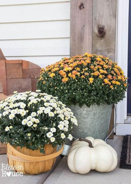 Decorating Home Decorating Store Patio And Garden Decor Front Yard  Landscaping Plans Landscape Designs Fall Patio
