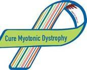 Myotonic dystrophy - Bing Images