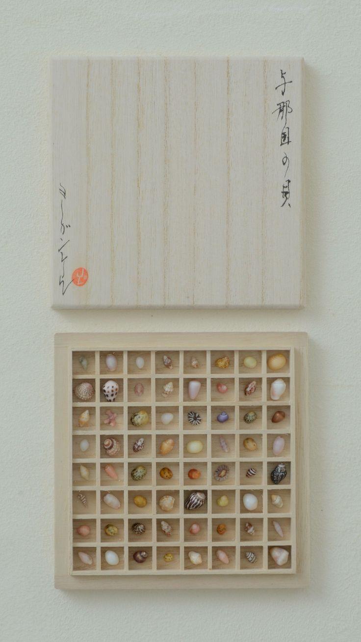 Shells and coral from Yonaguni island in Okinawa. Paulownia wood box.May 2014.