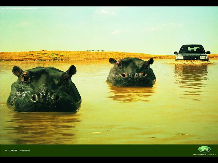 Cute Land Rover Commercial
