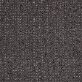 Color: 00501 Stainless In Savannah - EA024 Shaw ANSO Nylon Carpet Georgia Carpet Industries