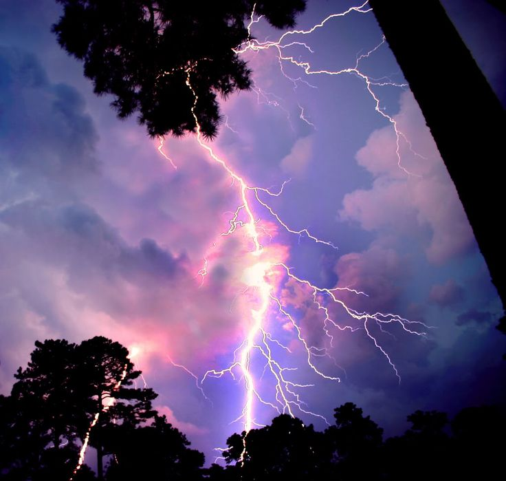 Seattle Lightning Map Picture Ideas References