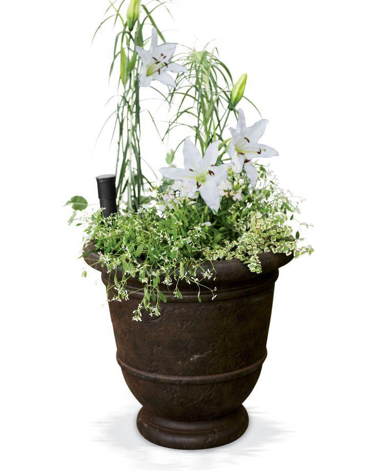 Urn Planters - Kylemore Outdoor Plastic Urn Planter - for lemon tree