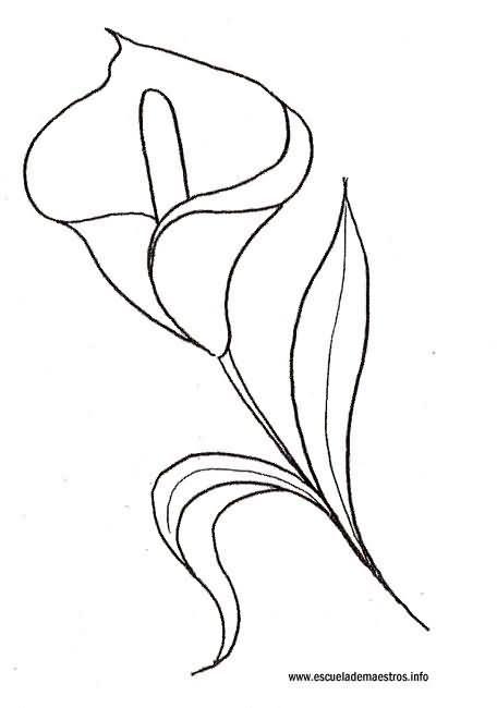 paso a paso plantillas de flores - Buscar con Google