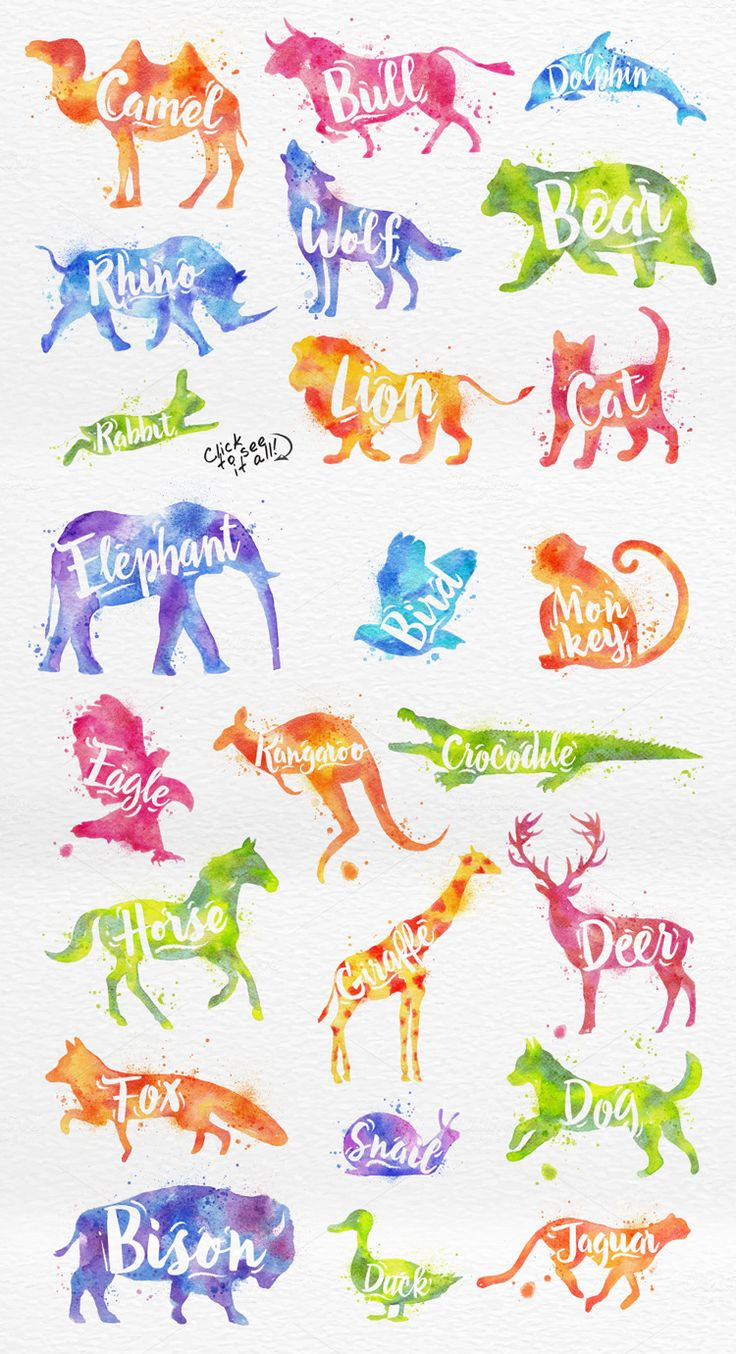 Watercolor Animals by Anna on @creativemarket
