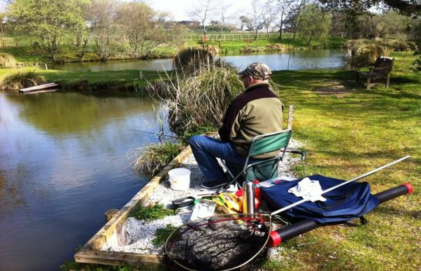 The fishing is superb with ghost carp (up to 26 pounds), common carp (up to 18 pounds), mirror carp (up to 10 pounds),  bream (up to 4.8 pounds), roach and rudd (up to 2 pounds), eels (up to 6 pounds – must go back in the lake alive),  tench (at 1 pound) and the best fish are the perch (at 4.5 pounds) in lakes 3 and 4.
