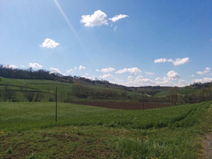 Castelvetro di Modena via Nizzola