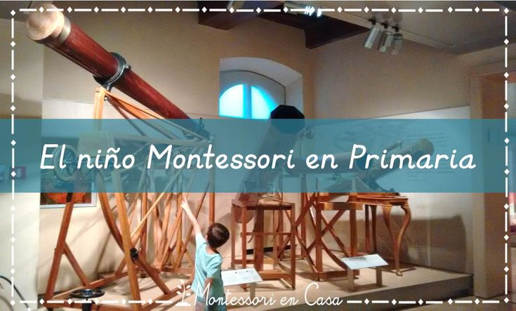 El niño Montessori en Primaria: Sembrando semillas de interés – The child at Montessori Elementary