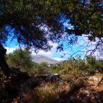 vakantie Griekenland 2015