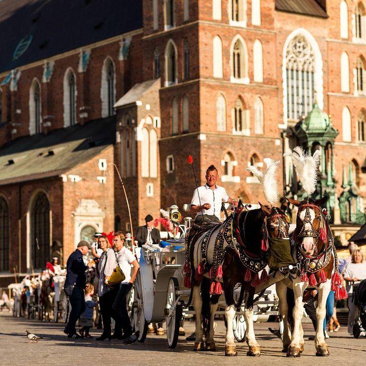 Краков это про кареты. #nikon #nikonphotography #nikond610 #d610 #nikkorlens #nikkor85mm #85mm #nikkor #poland #krakow #travel #vacation #tourism #traveling #trip #triponcar #horses #carriage #church #basilica http://tipsrazzi.com/ipost/1517724178324519252/?code=BUQChlUDflU