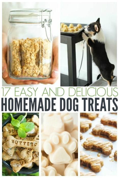 When it comes to treats for your furry friend, do you read the label? Some of the ingredients they put into dog treats I can't even begin to pronounce. Propylene Glycol. Potassium Sorbate. Sodium Nitrite. Who wants to feed their precious fur babies that? Not me. So instead of buying treats, I make my own. …