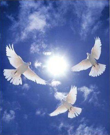 Assisi Ferenc - Tégy engem békéd eszközévé