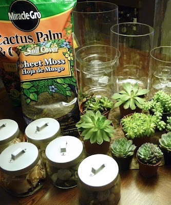 Succulent Terrariums DIY   I still have some I need to plant, maybe I'll try this.