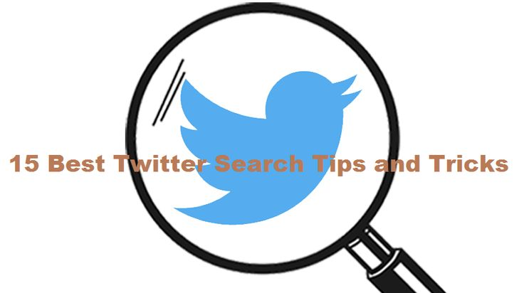 15 Best Twitter Search Tips and Tricks