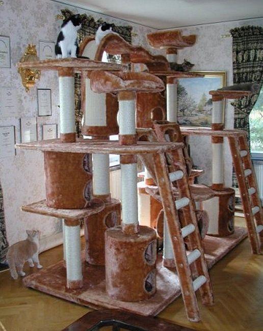 кошачьи домики своими руками модели термобелья