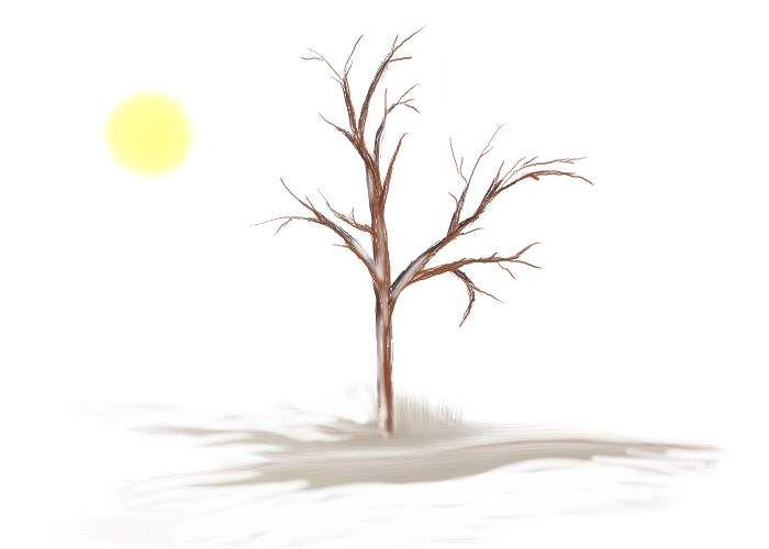 14 best stage hep illustrations arbres simples images - Croquis arbre ...