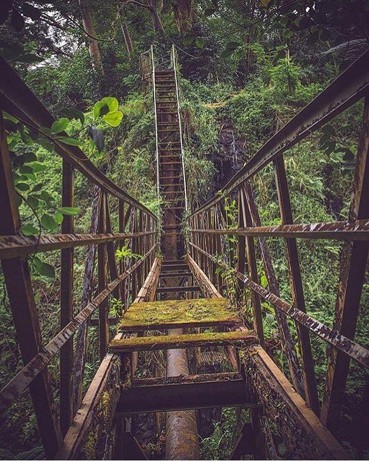 Bridge in Oahu Hawaii | Hawaii | Pinterest | Oahu hawaii ...