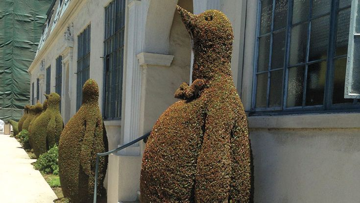 Meet the Topiary Artist Behind the Fox Lot's Green Bart Simpson #FansnStars