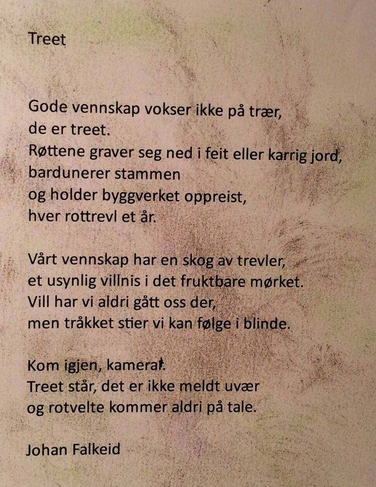 Treet - Johan Falkeid