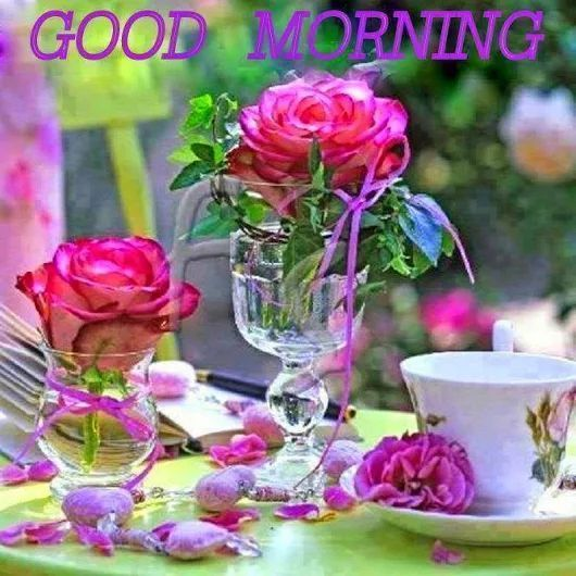 Cute Good Morning In French : Best good morning flowers ideas on pinterest