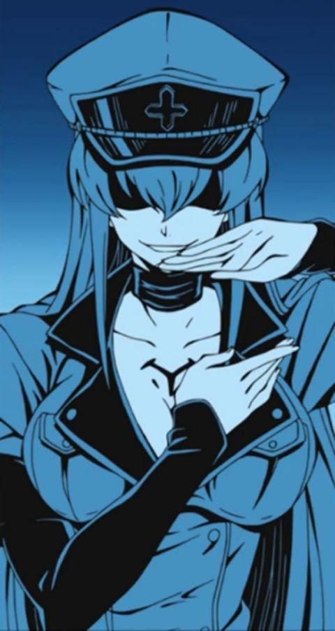 Fairy Tail Wallpaper Hd Image 480 215 902 Esdeath And Tatsumi Love Akame Ga Kill