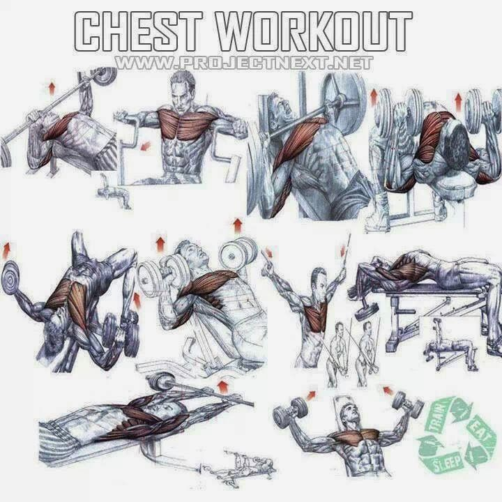 The Fitness era: BLASTING chest workout!