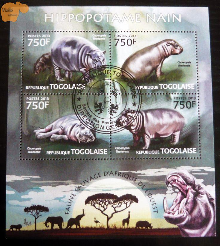 No. 806 | víziló | bélyeg | hippo | stamp