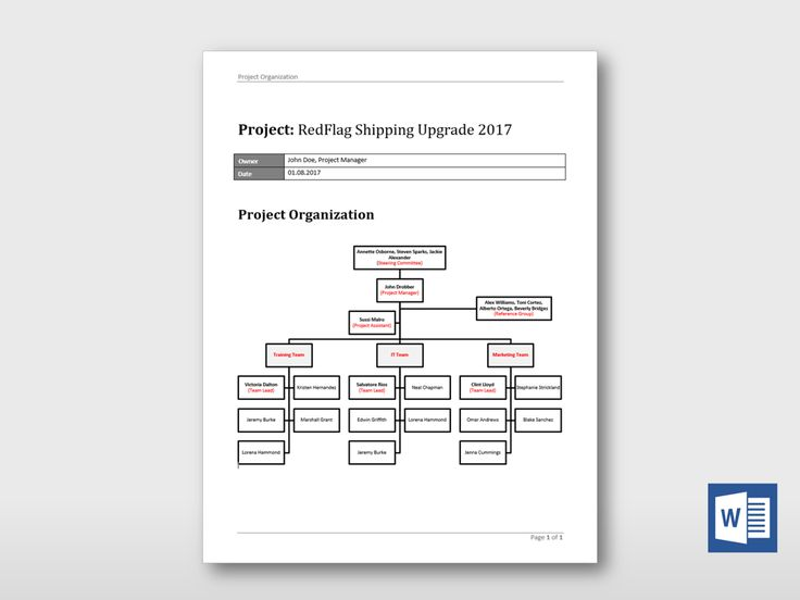 35 best Project schedules images on Pinterest Templates, Simple - project overview template