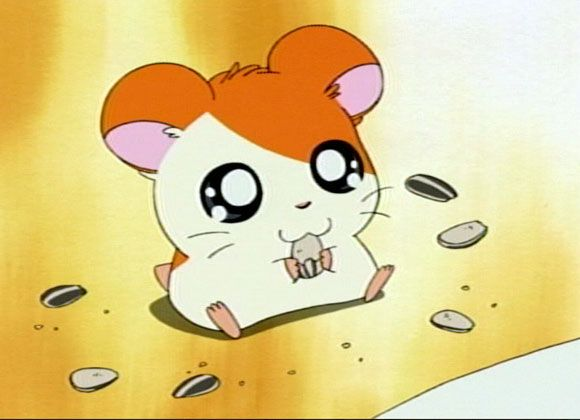Image result for hamtaro