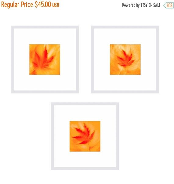 SALE 20% OFF Gift Set - Set of 3 Prints MAPLE Leaves - Flower Photos - Gift Idea - Housewarming GIft  - Matted Prints by Crionna