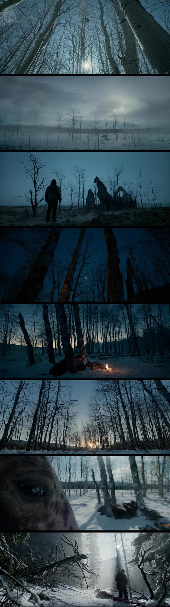 The Revenant. They used only natural light for this film, which shows through in how raw and beautiful each shot is.