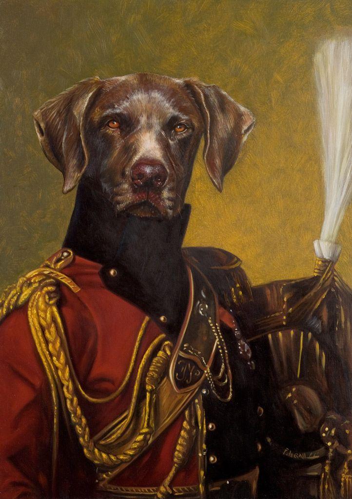 Les 131 meilleures images du tableau portraits animaux ...