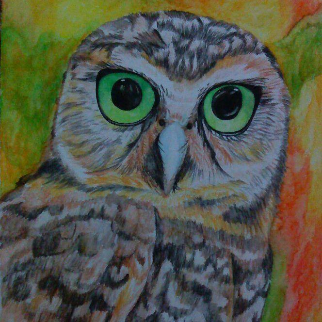 Hasil akhirnya begini, hehe lumayan.. An Owl #art #artist #watercolor #painting #learntopaint #animal #owl #fineart #traditionalart #fetisumaryanti