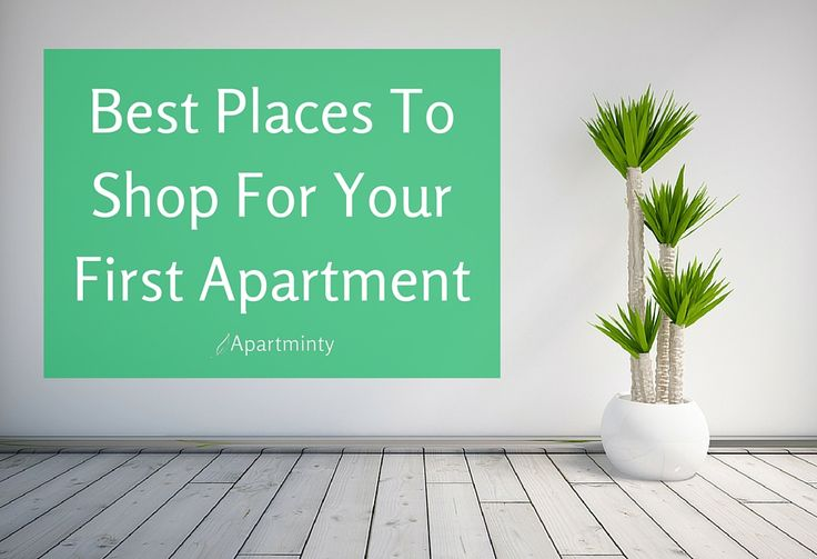 Decorating Your First Apartment Plans Endearing Design Decoration