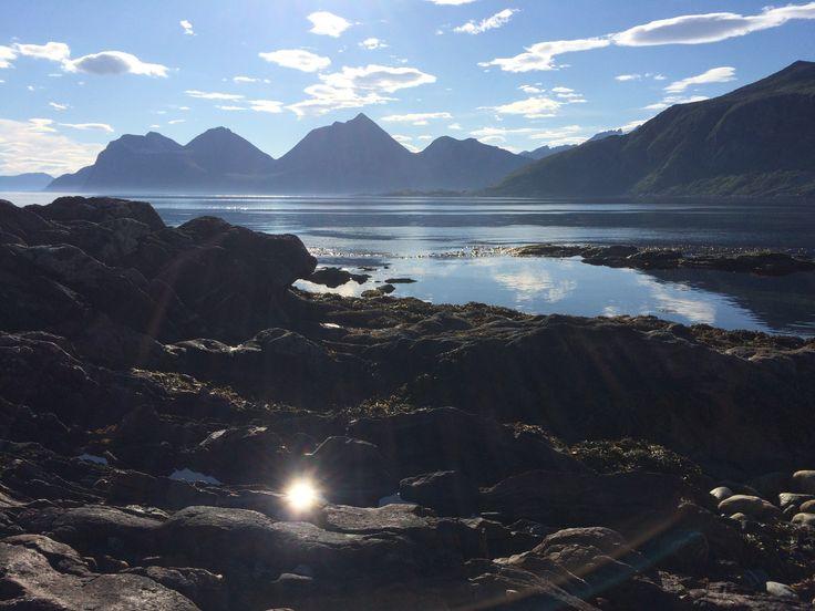 Hærlige Bjørnøya :)