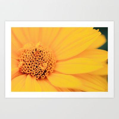 394 best Poster images on Pinterest - küchenbilder auf leinwand