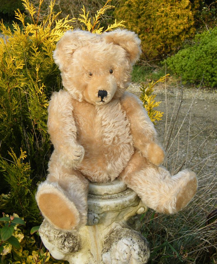 Adorable old German 'Diem' bear.